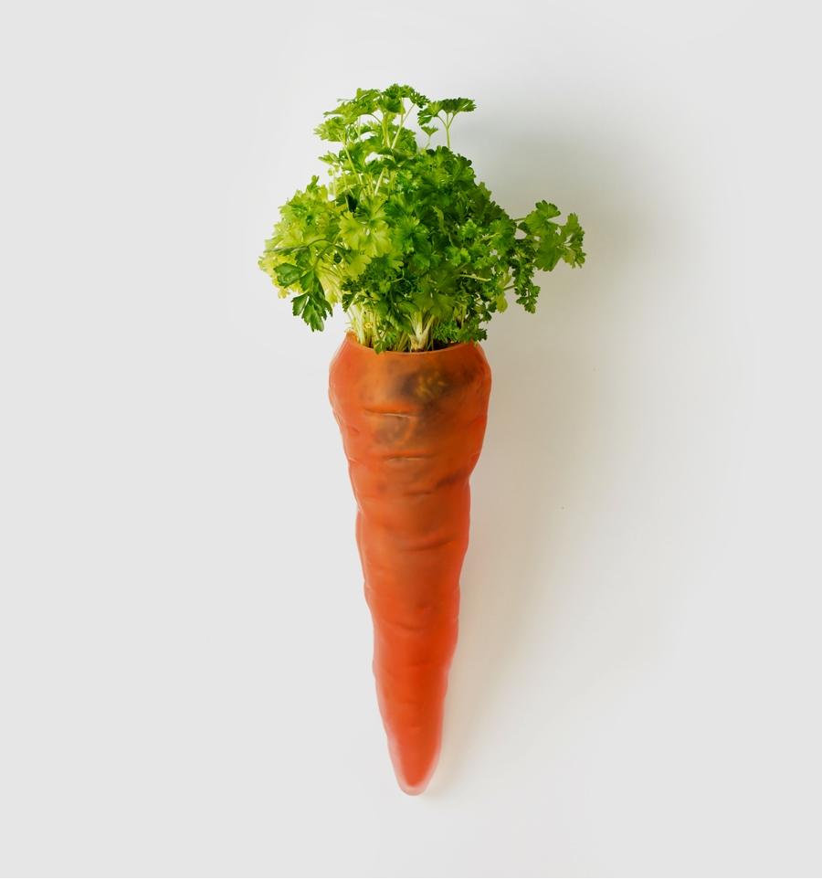 Planter Un Lilas En Pot la carotte
